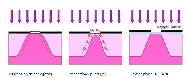 Porównanie punktu_PrintSystems